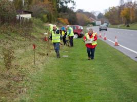 Bulb Planting On Rotary Road