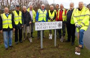 Daffodil Planting on Rotary Road