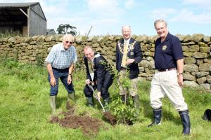 Trees For Nidderdale (Carbon Offset)