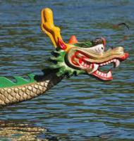 Rotary Dragon Boat Race