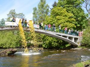 30 May 2015 Duck Race at Fling by the River