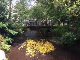 Charity Duck Race 2018
