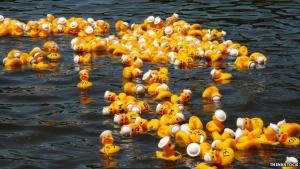 Duck Race and Highland Games