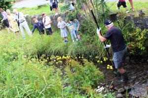 Whitchurch Festival Duck Race 2019