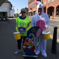 Easter Bunny Collection - Crowthorne - 20 April 2019