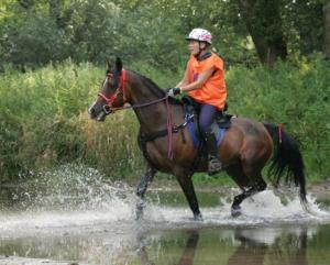 Speaker Lesley-Ann Parker - Her experience in the British Endurance Equestrian Team