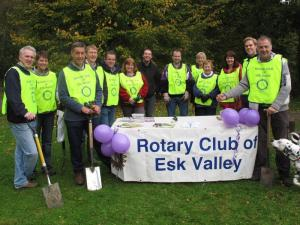 Esk Valley Rotary Focus On The Crocus At Roslin Glen