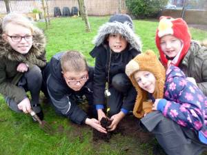 Tree Planting in Ainsdale
