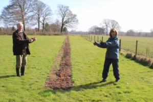 Wirral Hedge & Tree Planting