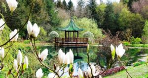 Visit to Himalayan Garden - No Meeting at the Bradford Club