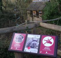 Maintenance work at Durrell Tamarin enclosure