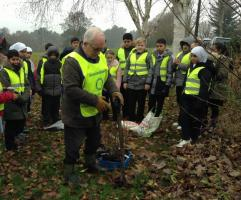 Tree Planting with Wollescote School Pupils