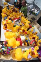Kirkcudbright Rotary Annual Duck Race 2016