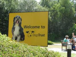 Dogs Trust Summer Open Day and Fun Dog Show 4th August 2013