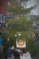 Ross Town Christmas Tree 2017