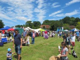 CHIDDINGFOLD FAIR 2016