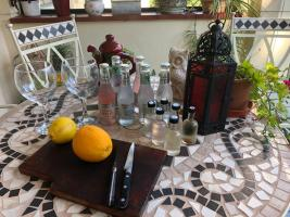 Gin and Tonic Tasting - 18th August