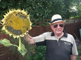 Summer Sunflower Party for Malaria Elimination