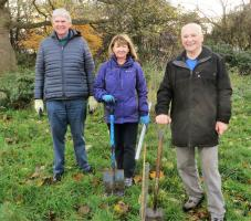 Tree planting at Sudley Estate, November 2018