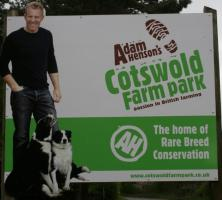 Youngsters day out at Cotswold Farm Park