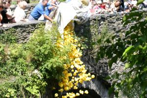 Betws-y-Coed Duck Race