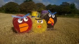 Return of Giant Minions to Isle of Man Field raises £3,260 for Charity