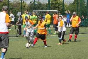 Learning Impaired Football 2014