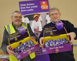 Collection for Polio