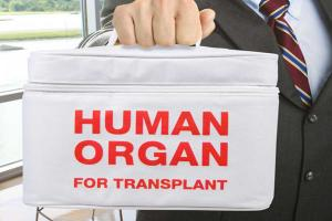 Organ Transplant Transportation