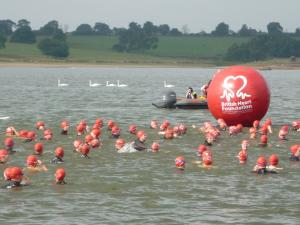 Swimmers in the water at the start of the swim