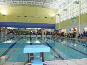 Special Olympics (Swimming)