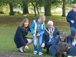 Planting Crocus bulbs at the Town Hall