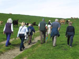 PHIL'S WALK  SUNDAY 8th JUNE 2014