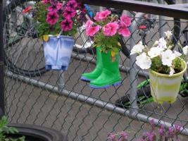 Welly boots and buckets put to good use by Sacred Heart Nursery.