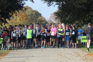 2016 Rotary Blenheim Run - Click for slideshow