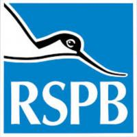 The life and times of an RSPB Local Group