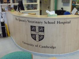 Apr 2017  Club Visit to the Cambridge Vet School