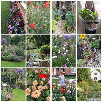 Frome Best Garden Competition - Results