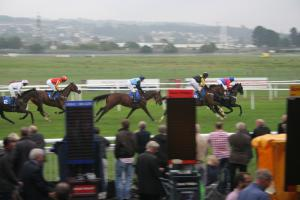 Newton Abbot races Sept 2013