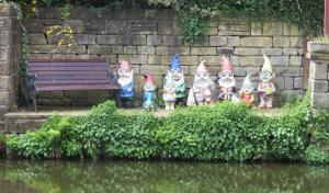 Gnomes with a view 'Looking at these energetic walkers I think we're far too old for Rotary!'