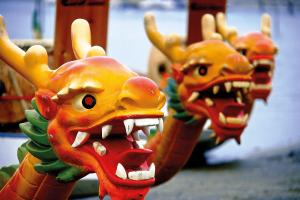 Dragon Boat races 2017