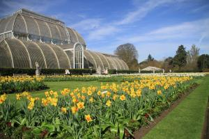 Visit to Kew Gardens March 2017
