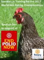 Speckles Runs in World Championship Hen Races for End Polio Now