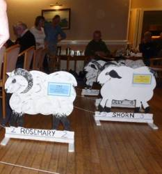 Sheepstakes picture gallery