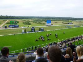 Visit to Ascot