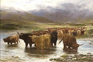 Cattle Drovers of Scotland - Alastair Brodie