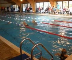 12th Annual Rotary Swimathon