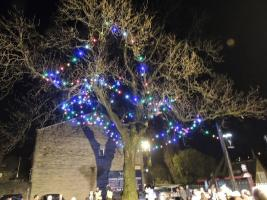 The Tree Of Lights 2015