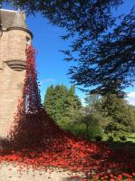 Visit to the Weeping Window