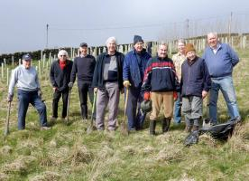Tree Planting for The Forest of Bradford